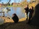 Vlhlavský rybník